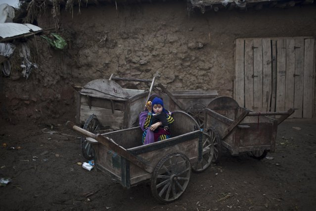 An Afghan refugee girl sitting in a wooden-cart, holding her younger brother while looking at other children playing in a slum on the outskirts of Islamabad, Pakistan, Monday, February 2, 2015. (Photo by Muhammed Muheisen/AP Photo)