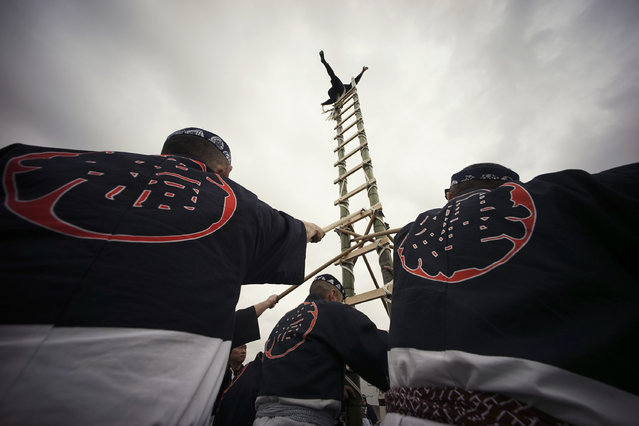 Members of a traditional firefighting preservation group perform ladder stunts during the annual New Year's Fire Brigade Review in Tokyo, Wednesday, January 6, 2016. (Photo by Eugene Hoshiko/AP Photo)