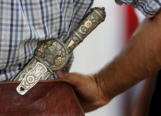 A gaucho wears a knife with the handle and the sheath made of silver and gold during the annual celebration of Criolla Week in Montevideo, March 31, 2015. (Photo by Andres Stapff/Reuters)