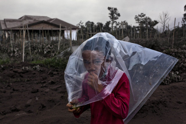 A boy wears a plastic bag to cover his face from ash following a further eruption of the Mount Sinabung on January 4, 2014 in Karo District, North Sumatra, Indonesia. (Photo by Ulet Ifansasti/Getty Images)