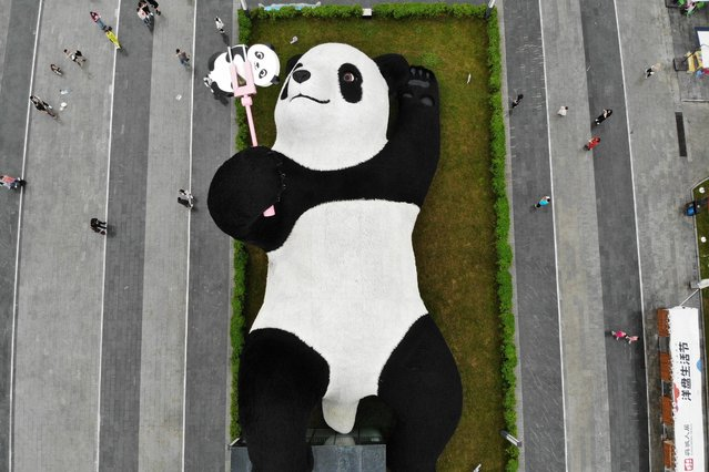 Aerial view of tourists visiting the 'Selfie Panda' sculpture by Dutch artist Florentijn Hofman at the Yangtianwo square during Chinese National Day Holiday on October 4, 2021 in Dujiangyan City, Chengdu City, Sichuan Province of China. (Photo by Zhang Lang/China News Service via Getty Images)