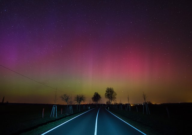 Northern Lights observed in the night sky on a country road near Lietzen in Maerkisch-Oderland, Germany, 17 March 2015. The Northern Lights (Aurora borealis) were generated by a gigantic cloud of electrically charged particles of solar storm in the Earth's atmosphere. The color effect is strengthened somewhat by the digital camera on a long exposure of about 20 seconds. (Photo by Patrick Pleul/EPA)