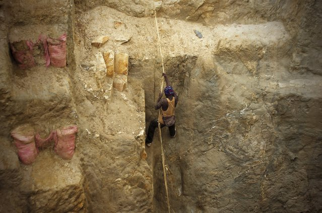 A gold prospector use a rope to climb the side of a gold mine near the village of Gamina in western Ivory Coast, March 17, 2015. (Photo by Luc Gnago/Reuters)