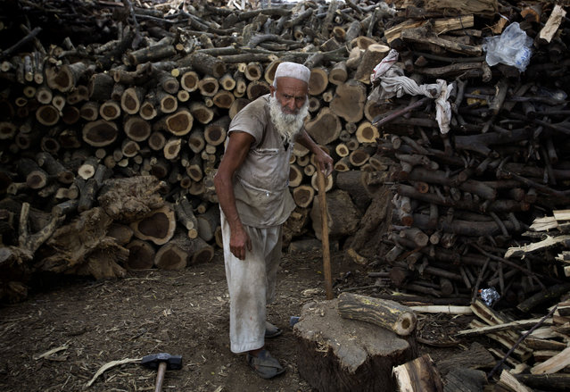 Pakistani Lala Akbar takes a break while cutting logs, in Islamabad, Pakistan, Wednesday, April 15, 2015. Logs are in great demand used as fuel for cooking and heating homes. (Photo by B. K. Bangash/AP Photo)
