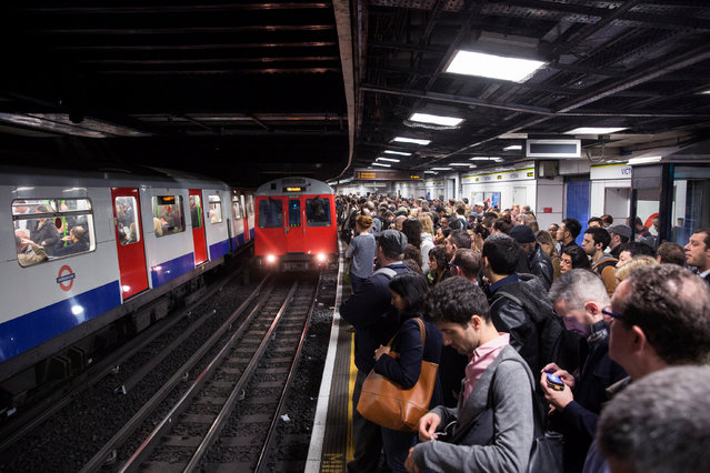 Commuters prepare to travel on the District Line of the London Underground which is running a limited service due to industrial action on April 30, 2014 in London, England. (Photo by Oli Scarff/Getty Images)