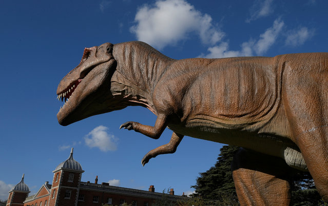 An animatronic life-size dinosaur is seen ahead of an interactive exhibition, Jurassic Kingdom, at Osterley Park in west London, Britain, March 31, 2017. (Photo by Toby Melville/Reuters)
