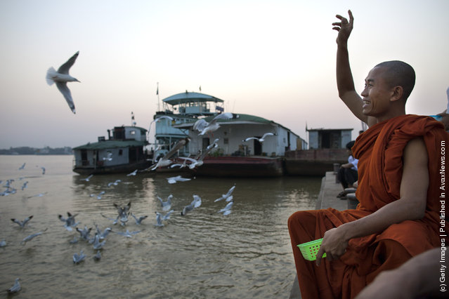 A Burmese monk feeds the seagulls at a Yangon river jetty