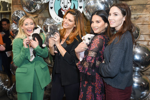 Victoria Justice, Hilary Duff, Whitney Cummings, Maria Menounos and Olivia Munn attends Love Leo Rescue's 2nd Annual Cocktails for a Cause at Rolling Greens Los Angeles on November 06, 2019 in Los Angeles, California. (Photo by Presley Ann/Getty Images)