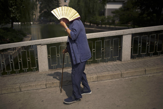 An elderly man uses a fan to shade himself from the sun as he walks in a public park in Beijing, Tuesday, June 7, 2016. Thursday marks the Duanwu Festival, a public holiday in China celebrated with outdoor activities including dragon boat races. (Photo by Mark Schiefelbein/AP Photo)