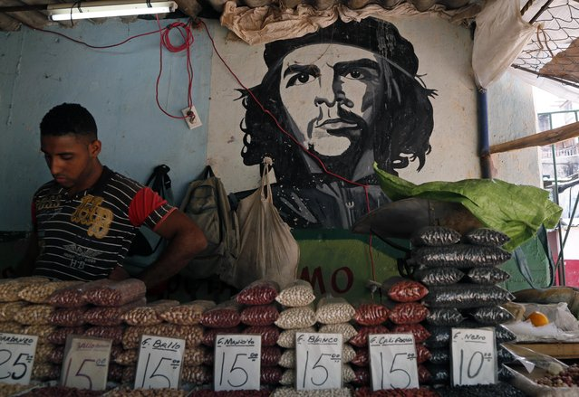 """A man works at a bean stall at a market beside a mural with the a picture of  revolution hero Ernesto """"Che"""" Guevara in Havana, Cuba, Thursday, April 9,  2015. (Photo by Desmond Boylan/AP Photo)"""