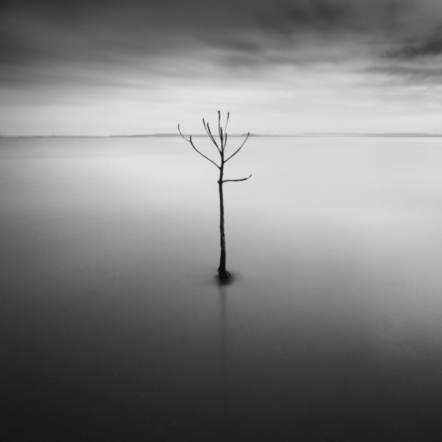 Minimalist  Photography from Thomas Leong