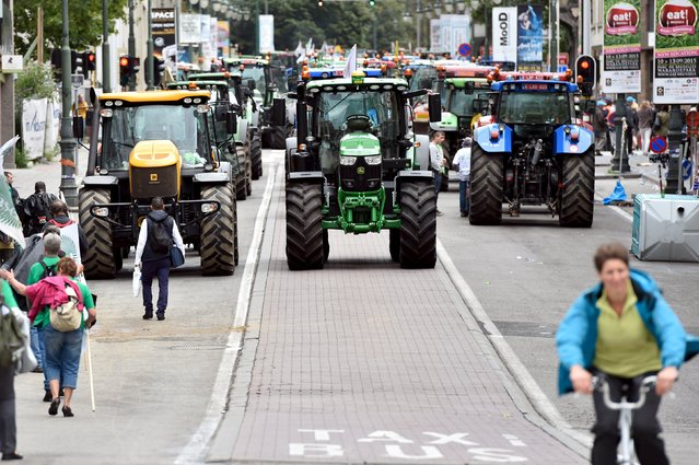 Tractors are seen in central Brussels as farmers and dairy farmers from all over Europe take part in a demonstration outside a European Union farm ministers' emergency meeting at the EU Council headquarters in Brussels, Belgium September 7, 2015. (Photo by Eric Vidal/Reuters)