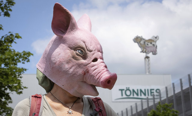 Animal rights activists protest in front of the Toennies meatpacking plant and slaughterhouse in Rheda-Wiedenbrueck, Germany, Saturday, June 20, 2020. Hundreds of new coronavirus cases are linked to the large meatpacking plant, officials ordered the closure of the slaughterhouse, as well as isolation and tests for everyone else who had worked at the Toennies site – putting about 7,000 people under quarantiner. (Photo by Friso Gentsch/dpa via AP Photo)