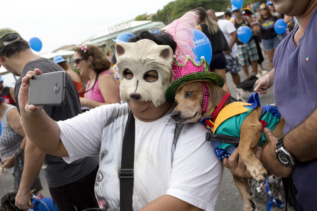 """A woman takes a selfie with Kaike the dog, both decked out in costumes for the """"Blocao"""" dog carnival parade along Copacabana beach in Rio de Janeiro, Brazil, Sunday, February 4, 2018. Carnival goes to the dogs as pet owners take to the streets for their own party, with their four-legged friends in ornate costumes. (Photo by Silvia Izquierdo/AP Photo)"""