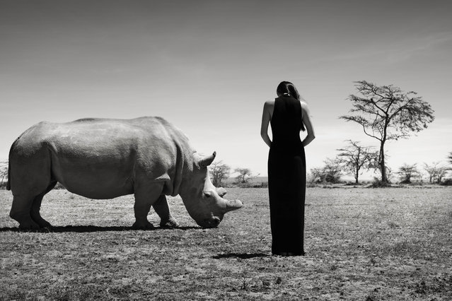 Jocelyn Luko with a rhino. (Photo by Sean Lee-Davies/Caters News)