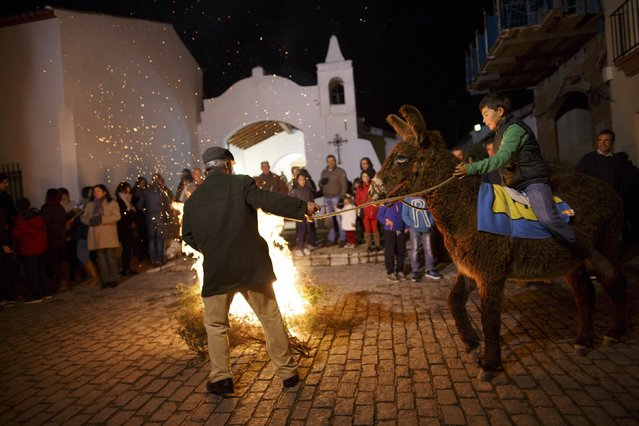 "A man pulls a donkey mounted by a boy during the ""Luminarias"" annual religious celebration on the eve of Saint Anthony's Day in the village of Alosno, southwest Spain, January 16, 2015. (Photo by Marcelo del Pozo/Reuters)"