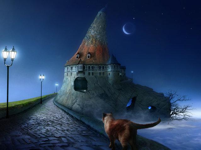Fantastic Illustration by Frank Melech