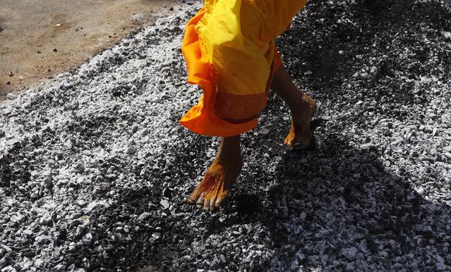 A Hindu devotee walks on burning coal during a religious procession to mark Thaipusam festival in Chennai, India, Tuesday, February 3, 2015. (Photo by Arun Sankar K./AP Photo)