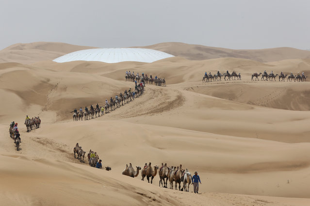 Toursits ride camels on a tour of Xiangshawan Desert, also called Sounding Sand Desert on July 18, 2013 in Ordos of Inner Mongolia Autonomous Region, China. Xiangshawan is China's famous tourist resort in the desert. It is located along the middle section of Kubuqi Desert on the south tip of Dalate League under Ordos City. Sliding down from the 110-metre-high, 45-degree sand hill, running a course of 200 metres, the sands produce the sound of automobile engines, a natural phenomenon that nobody can explain.  (Photo by Feng Li/Getty Images)