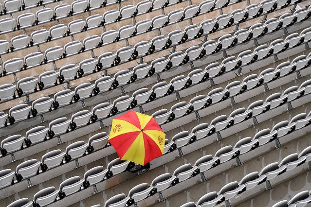 An MCC Member is seen with an umbrella as play is delayed due to rain on Day 3 of the First LV= Insurance Test Match between England and New Zealand at Lord's Cricket Ground on June 04, 2021 in London, England. (Photo by Shaun Botterill/Getty Images)