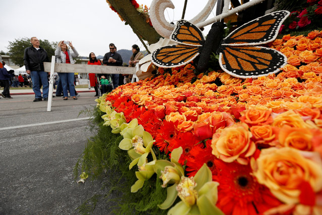 "People look at  Miracle-Gro's ""Everything's Coming Up Roses"" float which was featured in the 128th annual Rose Parade is pictured in Pasadena, California U.S., January 3, 2017. (Photo by Mario Anzuoni/Reuters)"