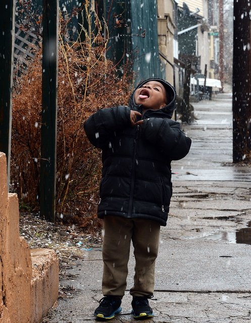 ZaVean Green, 5, catches early-spring snowflakes on his tongue March 26 near East Seventh and Ash streets in Erie, Pa. (Photo by Greg Wohlford/AP Photo/Erie Times-News)