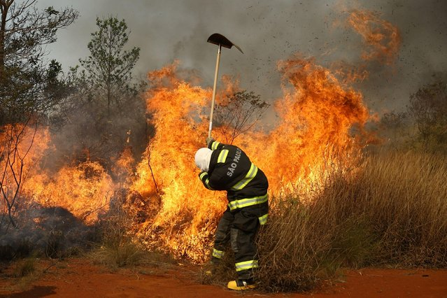 A firefighter works to put out the fire, after a hot air balloon crashed into the Juquery State Park, according to fire authorities, in Franco da Rocha, near Sao Paulo, Brazil, August 23, 2021. (Photo by Carla Carniel/Reuters)
