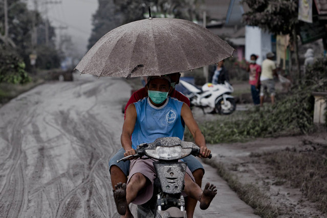 Ash covered motorcyclists are seen as they drive on a road covered with ash following a further eruption of the Mount Sinabung on January 4, 2014 in Karo District, North Sumatra, Indonesia. The number of displaced persons has increased to 20,000 in Western Indonesia as Mount Sinabung continues to spew ash and smoke after several eruptions since September. Eleven deaths have now been recorded as a result of the eruptions with hundreds more falling ill. Officials expect the number of evacuees to rise as volcanic activity remains high. (Photo by Ulet Ifansasti/Getty Images)