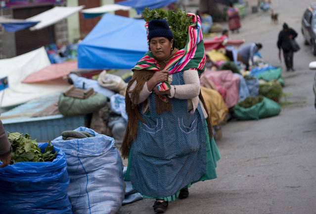 In this December 8, 2018 photo, a woman carries celery and parsley she just bought at a street market in La Paz, Bolivia. Because the capital lacks a waste water treatment plant, most of the produce at the city's markets are often contaminated due to being irrigated with sewage water. (Photo by Juan Karita/AP Photo)