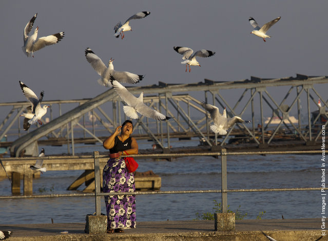 A woman feeds the seagulls along the Yangon river in Yangon, Myanmar