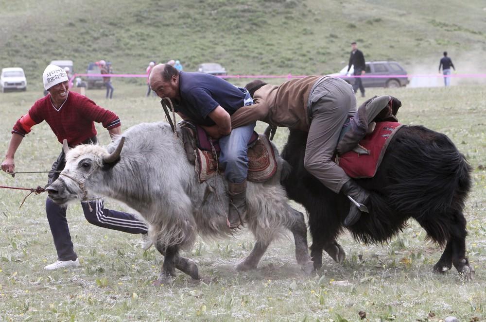 Kyrgyz National Horse Games