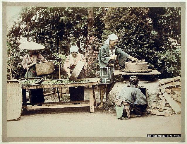 Steaming Tea Leaves