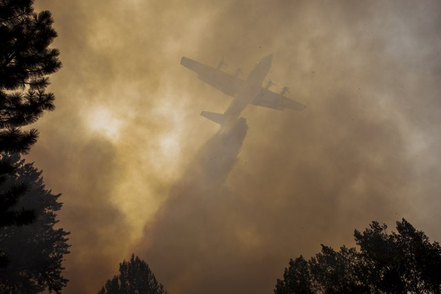 An airplane drops fire retardant on the Twisp River fire near Twisp, Washington August 20, 2015. Crews battling a flurry of wildfires raging unchecked in the Pacific Northwest braced on Thursday for high winds forecast in the region a day after three firefighters were killed and four others were injured in Washington state. (Photo by David Ryder/Reuters)
