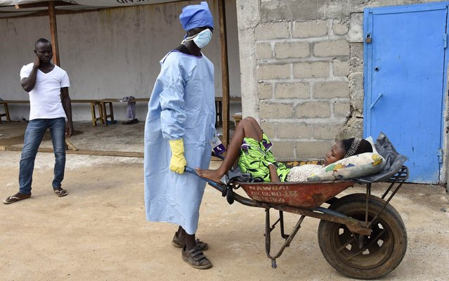 A man transports a possible victim of the Ebola virus in a wheelbarrow on October 2, 2014 at the Ebola treatment center at Island hospital in Monrovia. Liberian President Ellen Johnson Sirleaf said on October 1 the Ebola outbreak that has devastated her country was showing signs of stabilizing as the official death toll rose again. (Photo by Pascal Guyot/AFP Photo)