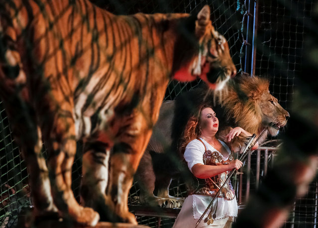 """A tiger, a lion and their trainer perform during the presentation of the new show """"The extreme arena"""" at the National Circus in Kiev, Ukraine, September 15, 2016. (Photo by Gleb Garanich/Reuters)"""