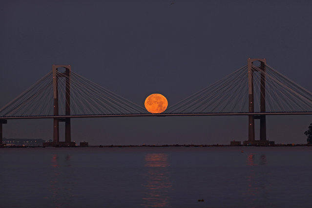 The full moon peeks out over the estuary of Vigo and behind the Rande Bridge during a penumbral lunar eclipse seen overnight from between the towns of Redondela and Moana, Galicia, northwestern Spain, 05 July 2020. A penumbral lunar eclipse is a natural phenomenon that occurs when the Earth is aligned in a near-straight line with the Sun and the Moon, thus blocking some sunlight from directly reaching the Moon's surface and casting a penumbra, or shadow, on our planet's sole natural satellite. (Photo by SXENICK/EPA/EFE)