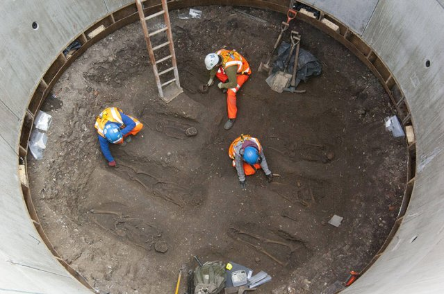 Undated handout photo issued by Crossrail of carefully laid out skeletons thought to be from a 14th century burial ground that have been discovered in London during work on the £14.8 billion Crossrail project. (Photo by Crossrail/PA Wire)