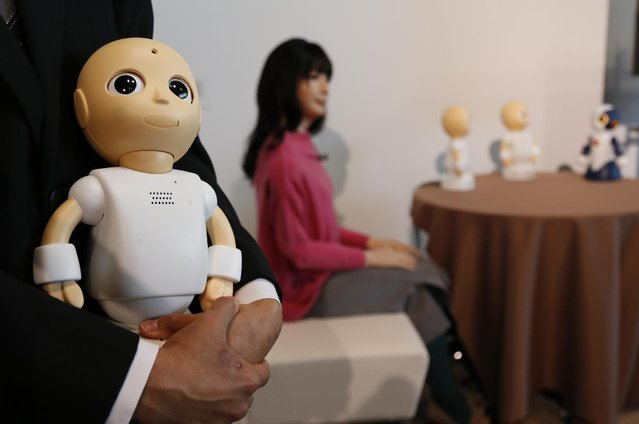 New talking robots CommU is held by Osaka University Assistant Prof. Yuichiro Yoshikawa during a press event in Tokyo Tuesday, January 20, 2015 as Android robot Otonaroid, center, another talking robot Sota, right, and two CommU robots are shown. (Photo by Shizuo Kambayashi/AP Photo)