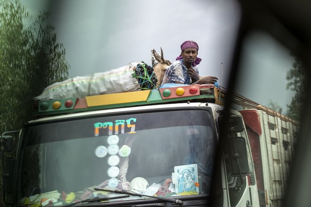 A man rides with goats and charcoal on the roof of a truck, seen through the window of a vehicle, near Danshe, a town in an area of western Tigray annexed by the Amhara region during the ongoing conflict, in Ethiopia Saturday, May 1, 2021. (Photo by Ben Curtis/AP Photo)