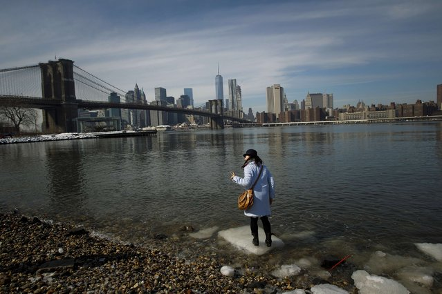 A woman steps on an ice floe at the Brooklyn Bridge Park in New York February 22, 2015. A fresh band of winter weather that churned up the East Coast on Saturday, pummeling the storm-weary region with snow, sleet and freezing rain, was expected to gradually taper off Sunday morning, forecasters said. (Photo by Eduardo Munoz/Reuters)