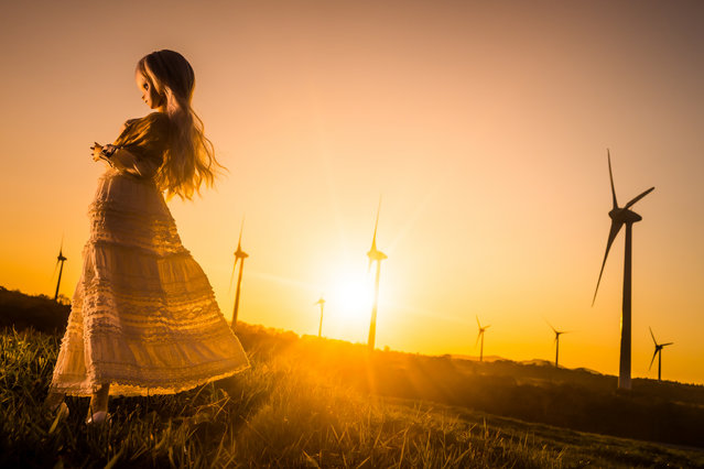 """""""Wind of the sunset"""". Location: Nunobiki Highlands, Japan. (Photo and caption by AZURE)"""