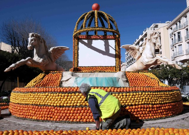 "A worker puts the final touch to a replica of fountain made with lemons and oranges which shows a scene of the movie ""La Dolce Vita"" during the Lemon festival in Menton, France, February 10, 2016. (Photo by Eric Gaillard/Reuters)"