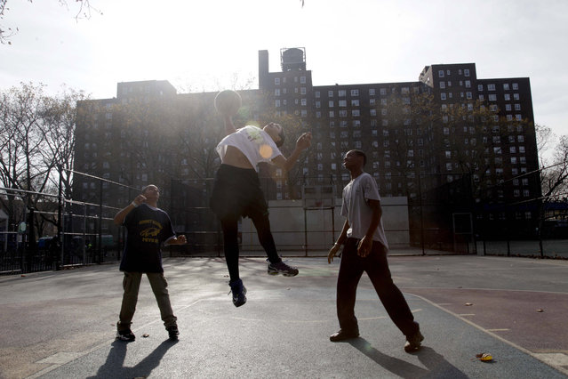 In this November 12, 2012 file photo, three boys play basketball in front of the Red Hook Houses in the Brooklyn borough of New York. (Photo by Seth Wenig/AP Photo)