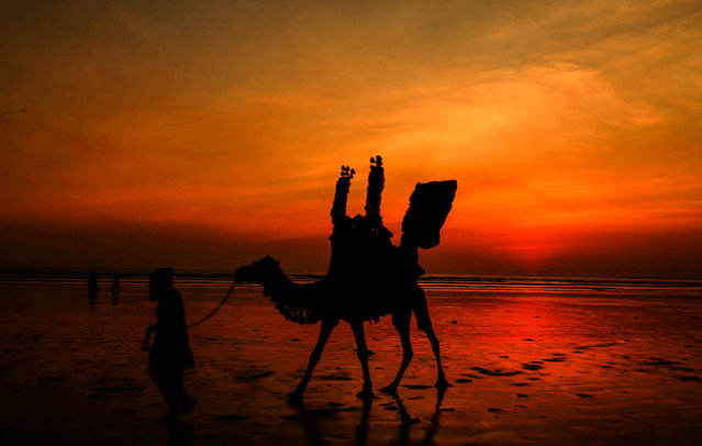 A man leads his Camel at the beach during sunset in Karachi, Pakistan, 27 December 2018. (Photo by Rehan Khan/EPA/EFE)