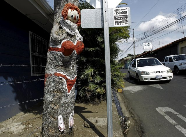 """""""The Woman in Red Bikini"""", a replica of the figure of a woman wearing a bikini and painted on a mango tree by resident Gonzalo Sanchez, is seen at the corner of a street in the neighborhood of Escazu in San Jose, Costa Rica, March 1, 2016. (Photo by Juan Carlos Ulate/Reuters)"""