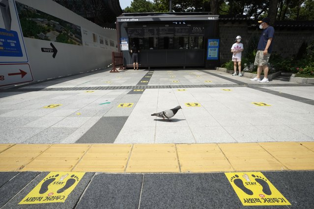 """Social distancing signs are seen on the road in front of the Deoksu Palace in Seoul, South Korea, Friday, August 20, 2021. South Korea's daily increase in coronavirus infections on Friday exceeded 2,000 for the second straight day as officials extended the highest level of social distancing restrictions short of a lockdown in large population centers. The signs read """"Social distancing"""". (Photo by Ahn Young-joon/AP Photo)"""