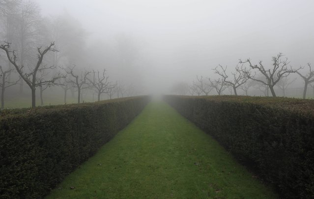 A misty day at Rococo Gardens in Painswick, Gloucestershire, on January 20, 2014. (Photo by Tim Ireland/PA Wire)