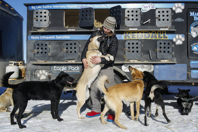 Champion musher Martin Buser's son, Rohn, is seen with his dad's team before the restart of the Iditarod Trail Sled Dog Race in Willow, Alaska March 6, 2016. (Photo by Nathaniel Wilder/Reuters)