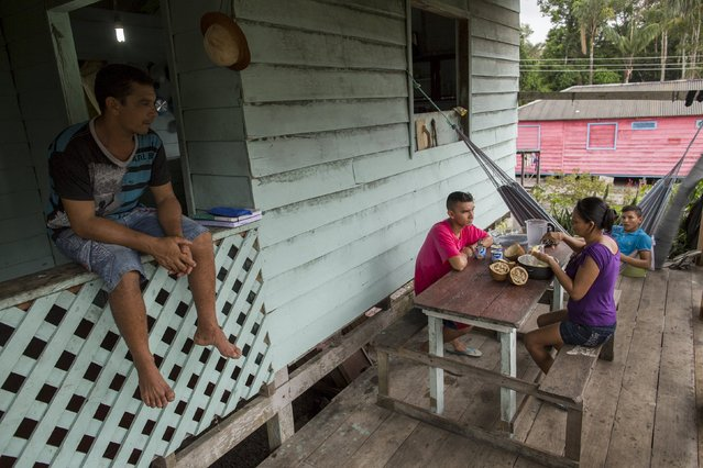 Kambeba Indian, Dream Braga (C), 18, helps his mother, Maria Lucia Braga Cruz as his father Deuzimar Gomes (L) looks on at his home in the village Tres Unidos, Amazon state May 10, 2015. (Photo by Bruno Kelly/Reuters)