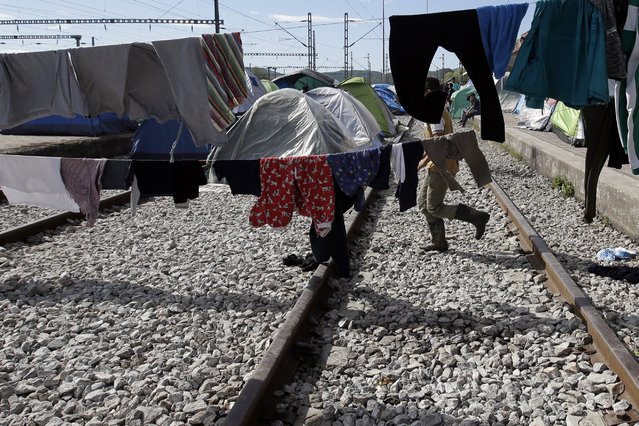 A man walks on the tracks of a railway station turned into a makeshift camp crowded by migrants and refugees at the northern Greek border point of Idomeni, Greece, Monday, April 25, 2016. (Photo by Gregorio Borgia/AP Photo)